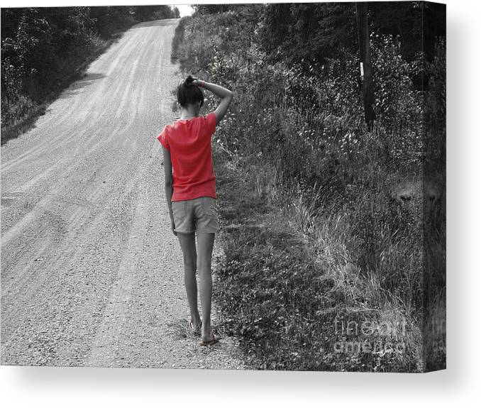 Road Canvas Print featuring the photograph Choose Your Own Path by Cathy Beharriell
