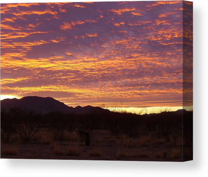 Sunset Canvas Print featuring the photograph Delightful Sky by Kathleen Nash