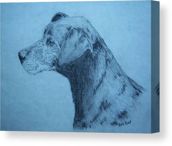 Dog Pet Friend Canvas Print featuring the drawing Dudley by Ken Day