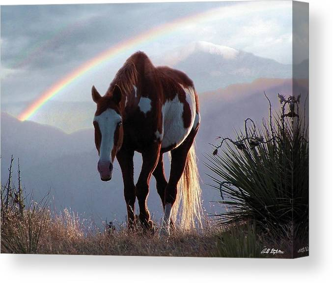 Horses Canvas Print featuring the mixed media Evening Promise by Bill Stephens
