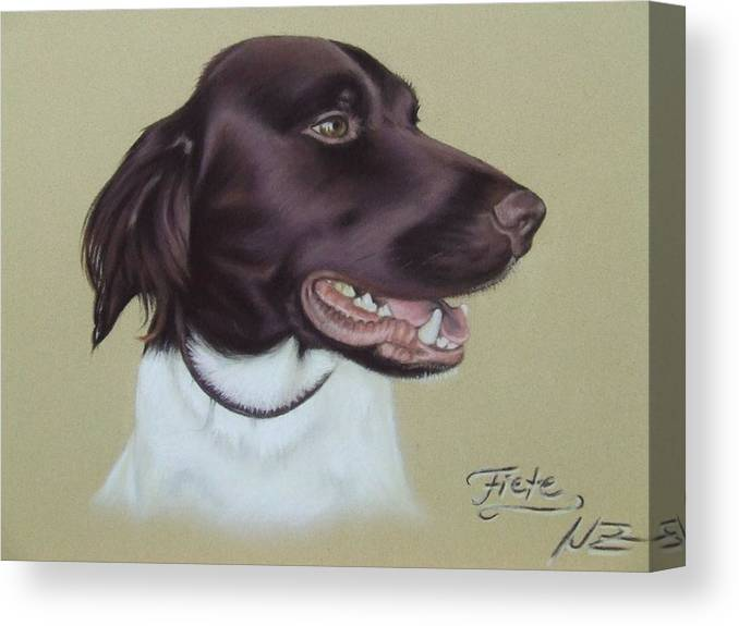 Dog Canvas Print featuring the pastel Fiete by Nicole Zeug