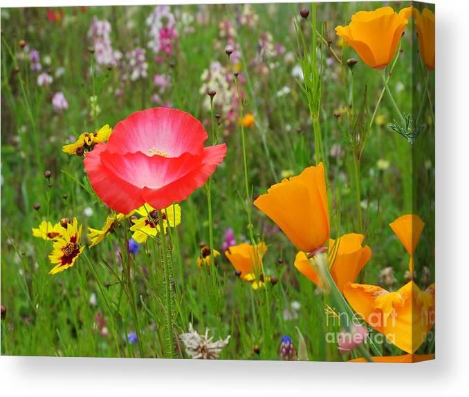Garden Canvas Print featuring the photograph Garden Of Delight by John Loyd Rushing