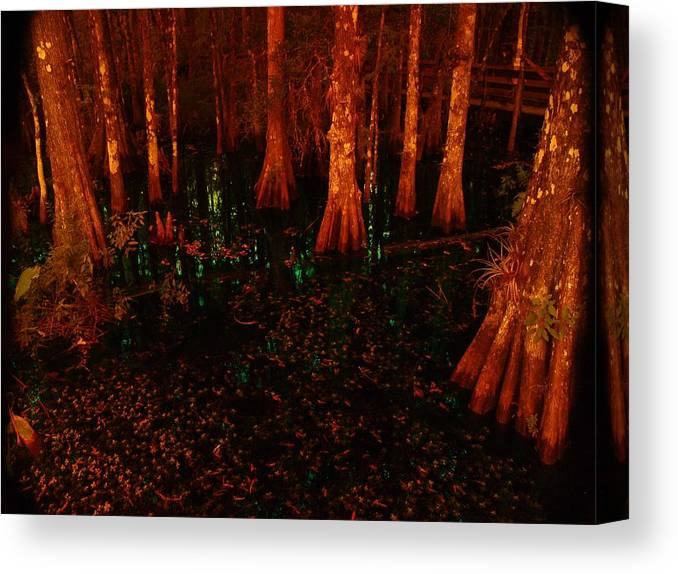 Halloween Canvas Print featuring the photograph Halloween Woods by Florene Welebny