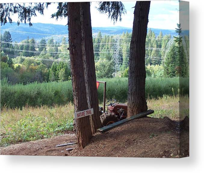 Landscape Canvas Print featuring the photograph Harvest Time At Apple Hill by Dawn Marie Black