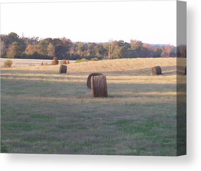 Hey Canvas Print featuring the photograph Harvest Time by Paula Ferguson