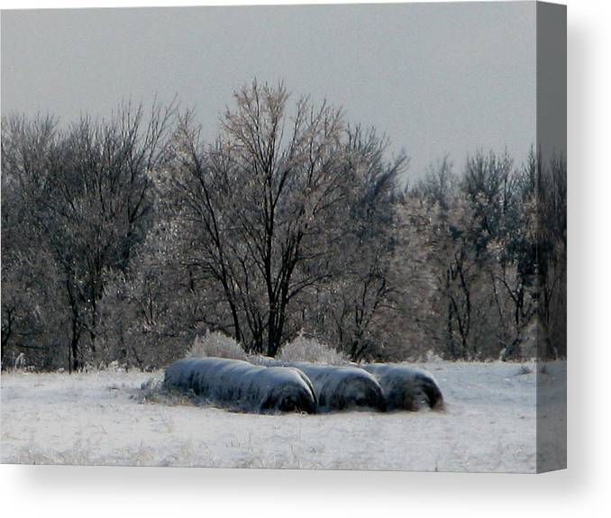 Nature Canvas Print featuring the photograph Hay Bales by Martie DAndrea