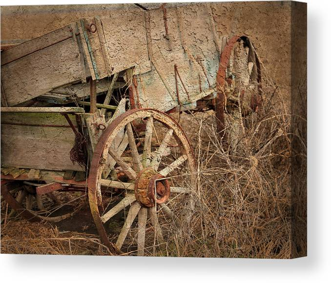 Theresa Campbell Canvas Print featuring the photograph Heading West by Theresa Campbell
