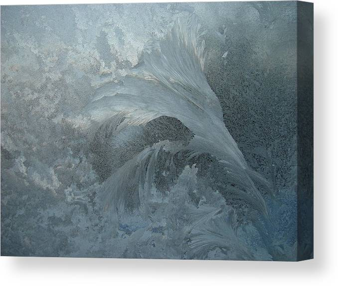 Nature Canvas Print featuring the photograph Ice Crystals 1 by Eric Workman