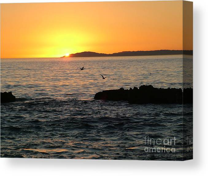 Sunset Canvas Print featuring the photograph Last Rays by John Loyd Rushing