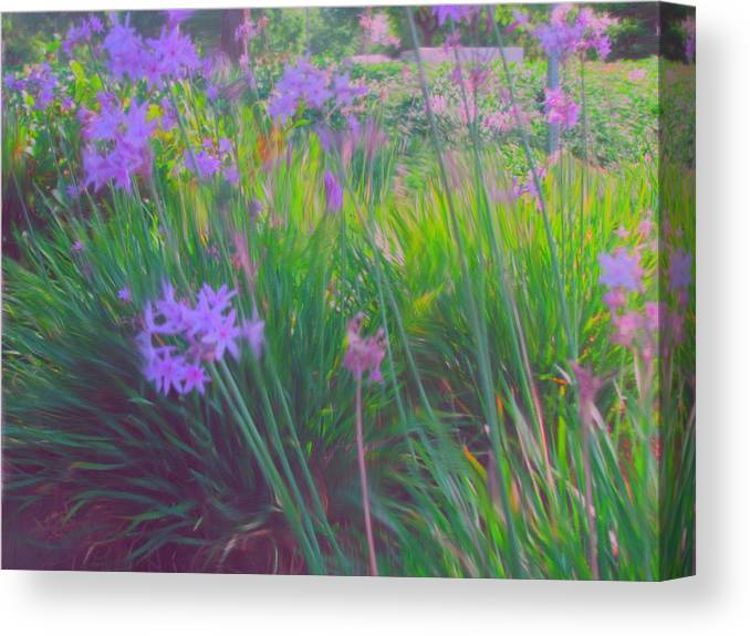Flowers Canvas Print featuring the painting Lavender Field by Maribel McIntosh