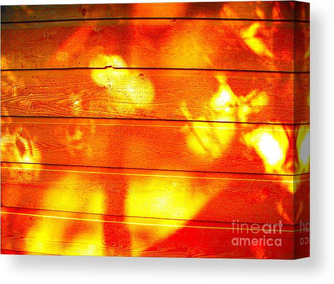Sunlight Canvas Print featuring the photograph Leafy Sunlit Abstract by Chuck Taylor