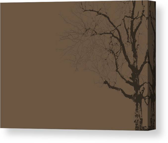 Tree Canvas Print featuring the photograph Loneliness by Ed Smith
