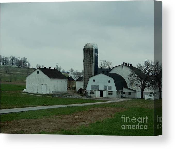 Amish Canvas Print featuring the photograph Looking Down An Amish Lane by Christine Clark