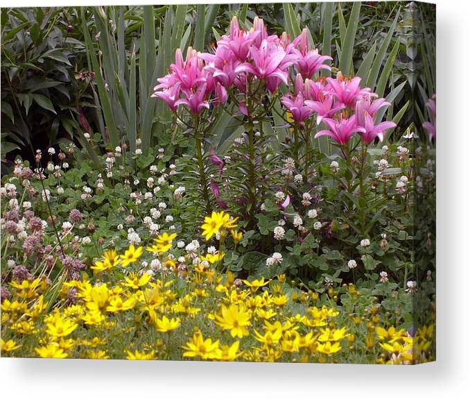 Mother Canvas Print featuring the photograph Moms Garden by Ann Willmore