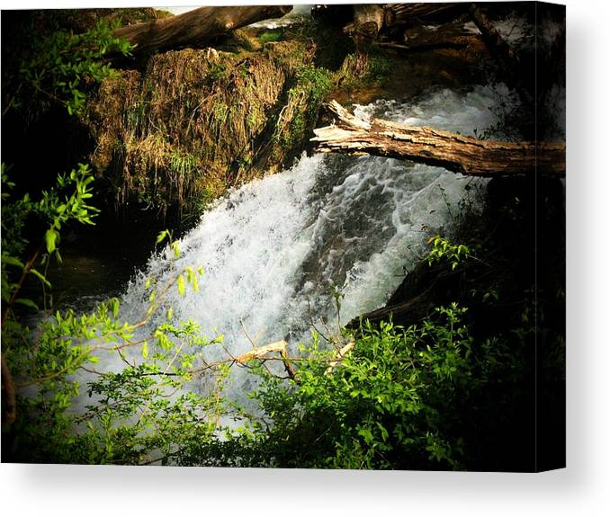 Waterfall Canvas Print featuring the photograph Mountain Waterfall by Joyce Kimble Smith