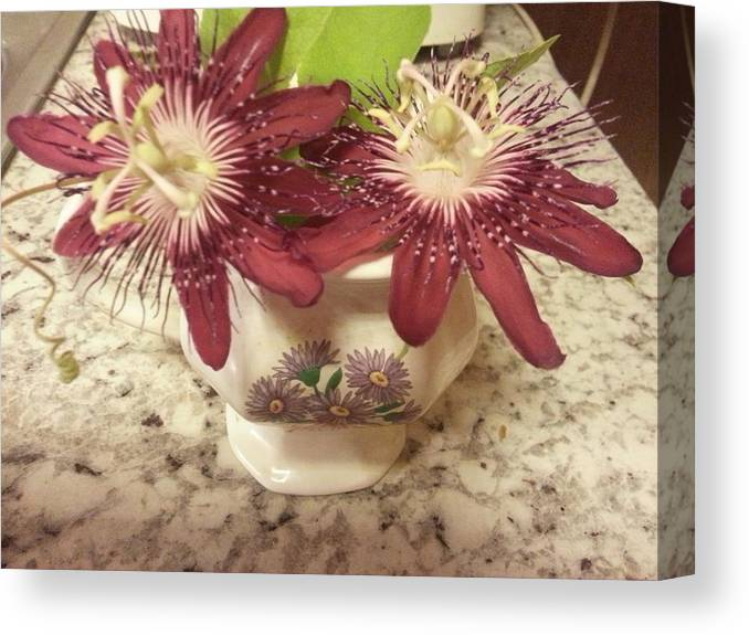 Canvas Print featuring the photograph Passion Vine Flower by Penny Breaux