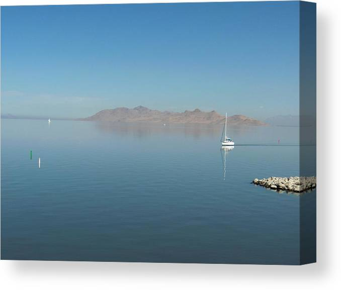 Landscape Canvas Print featuring the photograph Peaceful Existence by Janet Hall