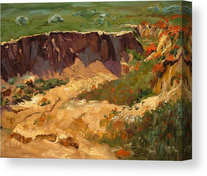 Landscape Canvas Print featuring the painting Poppy Gorge by Barbara Andolsek