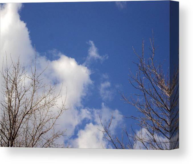 Photograph Skies Canvas Print featuring the photograph Prairie Skies 3 by Janice Robertson