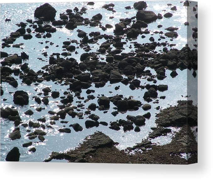 Beach Canvas Print featuring the photograph Rocky Shore by John Loyd Rushing