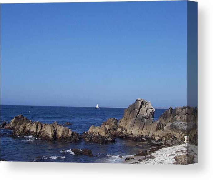 Ocean Canvas Print featuring the photograph Sailboat In The Bay by Dawn Marie Black