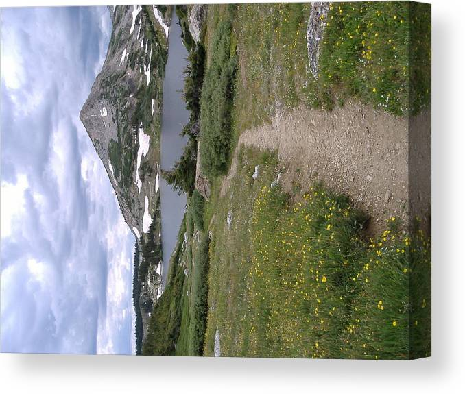 Snow'y Range In July #1 Wyoming Canvas Print featuring the photograph Snow'y Range by Alice Eckmann