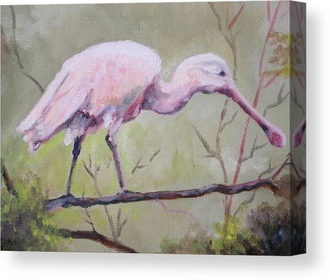 Bird Canvas Print featuring the painting Spoonbill by Carol Mueller