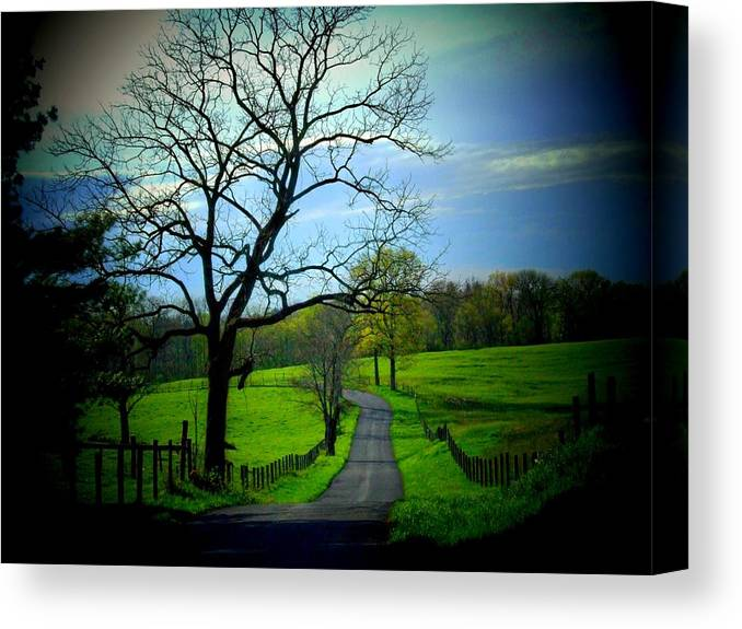 Country Road Canvas Print featuring the photograph Spring Road by Michael L Kimble