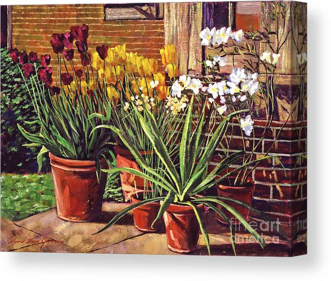 Patio Canvas Print featuring the painting Spring Tulips And White Azaleas by David Lloyd Glover