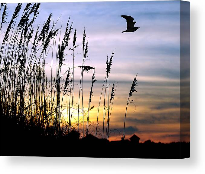 Sunset Canvas Print featuring the painting St Augustine Beach Sunset by Addison Fitzgerald