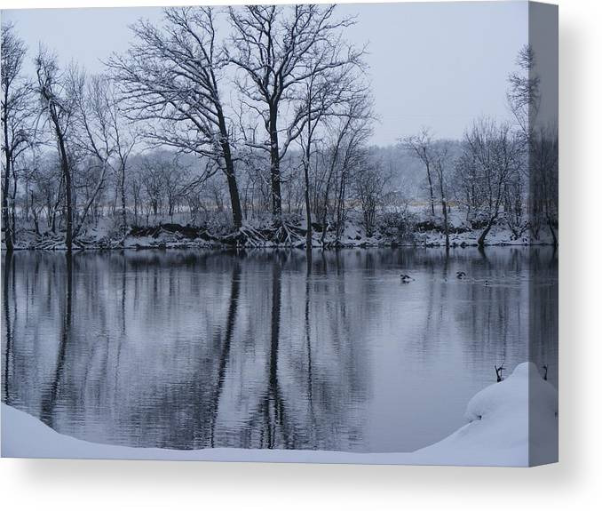 Nature Canvas Print featuring the photograph Swiming Duck by Cindy Yeakel