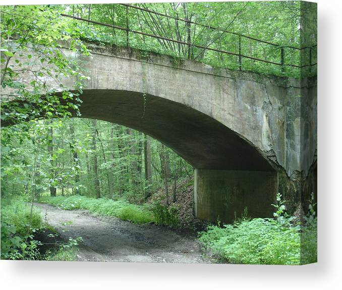 Bridge Canvas Print featuring the photograph The Bridge by Robyn Leakey