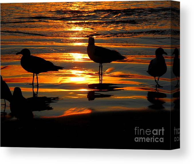 Sunset Canvas Print featuring the photograph The Sun Has Nearly Set by PJ Cloud