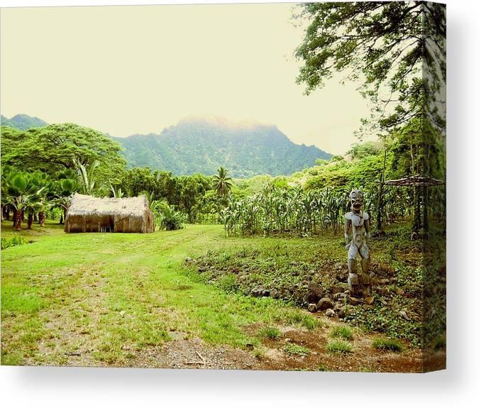 Farm Canvas Print featuring the photograph Tropical Farm by Halle Treanor