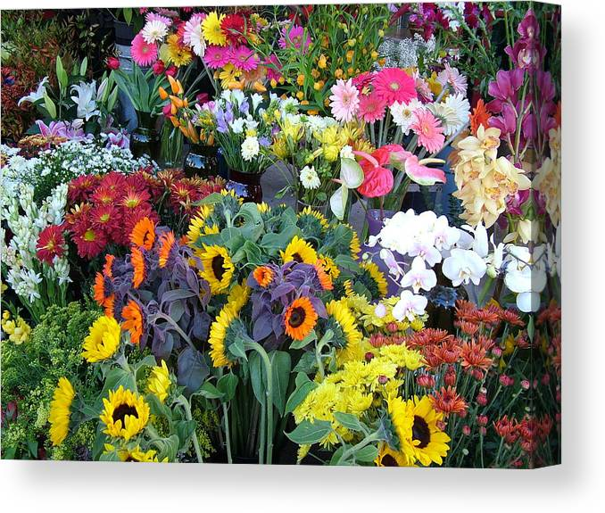 Flowers Canvas Print featuring the photograph True Colors by John Loyd Rushing