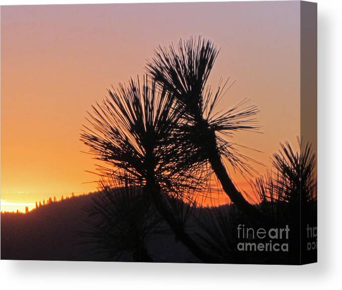 Sun Canvas Print featuring the photograph Yosemite Sunset by Nancy Worrell