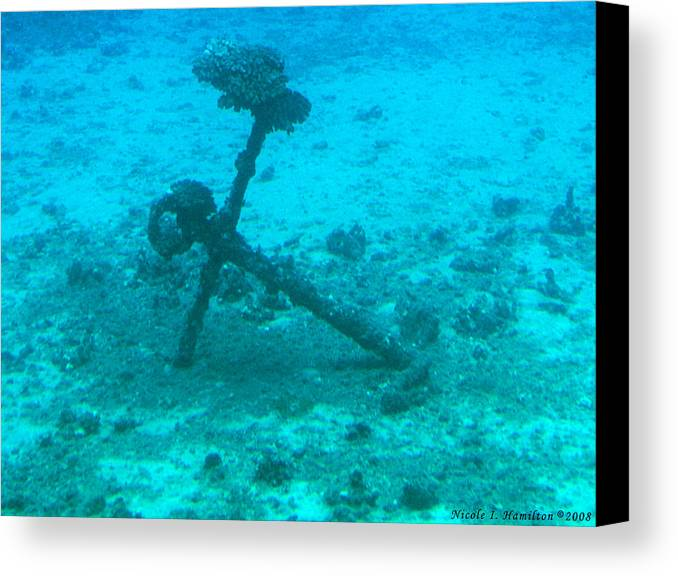 Sea Canvas Print featuring the photograph Underwater Anchor by Nicole I Hamilton
