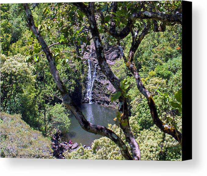 Water Fall Canvas Print featuring the photograph Secluded Falls by Nicole I Hamilton