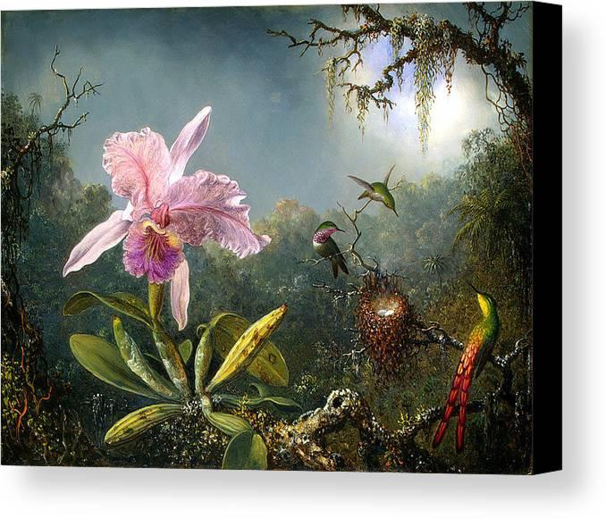 Cattleya Orchid And Three Brazilian Hummingbirds Canvas Print featuring the digital art Cattleya Orchid And Three Brazilian Hummingbirds by Emile Munier