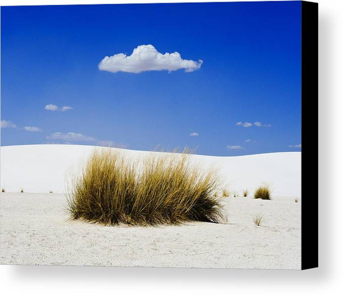 First Contact Canvas Print featuring the photograph First Contact by Skip Hunt