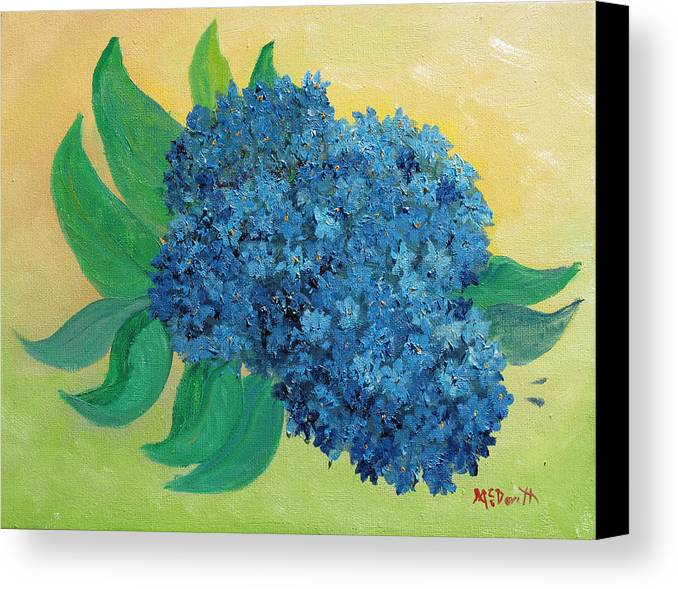 Floral Canvas Print featuring the painting Hydrangea by Barbara McDevitt