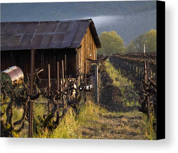 Napa Canvas Print featuring the photograph Napa Morning by Bill Gallagher