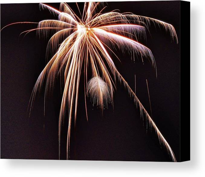 Fireworks Canvas Print featuring the photograph Palm Tree Fireworks by David Parsley