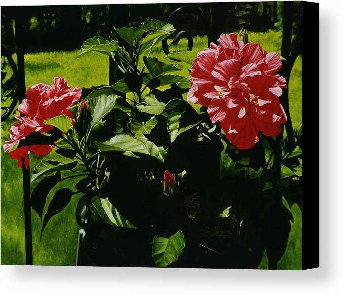 Floral Canvas Print featuring the painting Red Hibiscus by Gary Hernandez