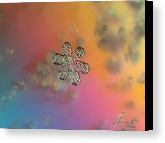 Snowflake Canvas Print featuring the photograph Sherbert by Jackie Novak