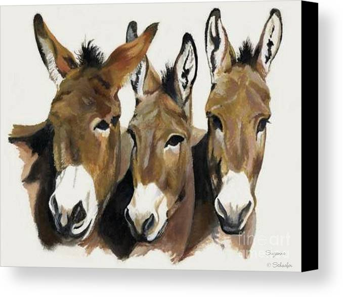Donkeys Canvas Print featuring the painting The Brothers Three by Suzanne Schaefer