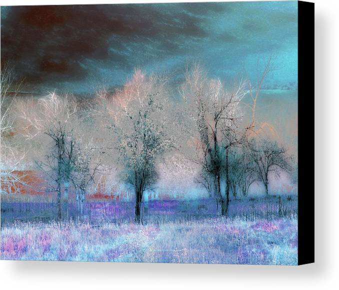 Landscape Canvas Print featuring the photograph 1050 by Peter Holme III