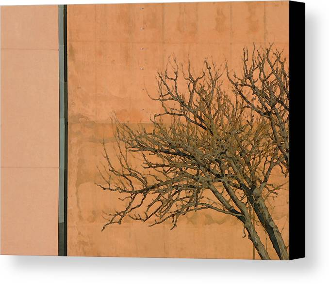 Abstract Canvas Print featuring the photograph Architecture With Winter Tree by Lenore Senior