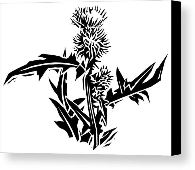 Thistle Canvas Print featuring the photograph Thistle, Lino Print by Gary Hincks