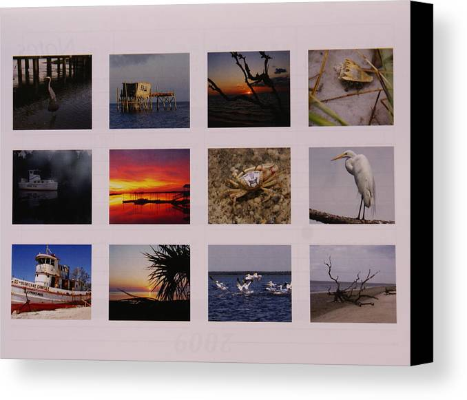 Florida Canvas Print featuring the photograph 2008 Calendar Back Of Gulf Views Edition by Debbie May